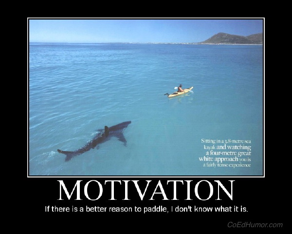 If there isn't a better reason to paddle...
